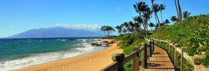South Maui copy