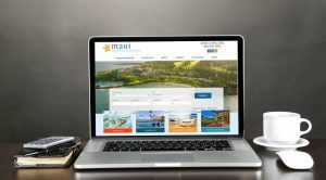 Maui Real Estate Online Exposure