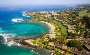Maui Beachfront and Oceanfront Homes Aereal copy